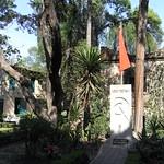 Mexico09_20090228_498