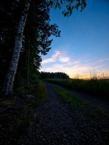 sunset summer field night landscape countryside view wideangle birch hdr iitti terrascania photoengine lyöttilä panasonicgvario714mmf4asph panasoniclumixgh2