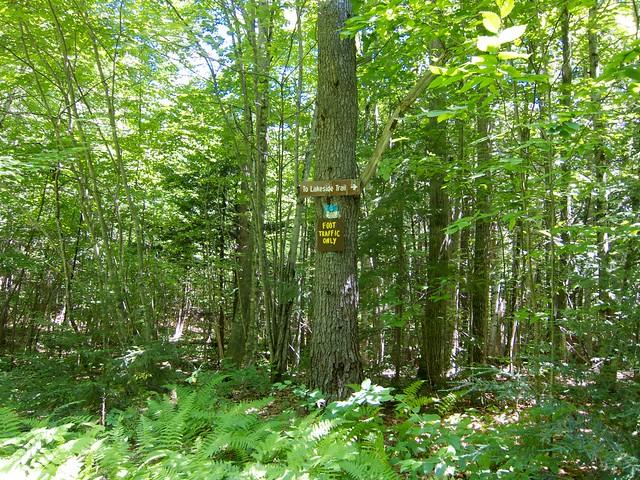 0:22:35 (22%): lebanon sign hiking newhampshire bostonlot