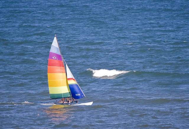 Gulf Fun