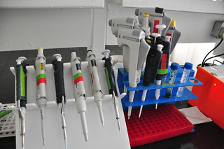 Pipettes on display | by IITA Image Library