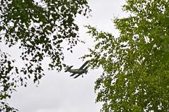 Kurkachi Airfield - An-2 flying