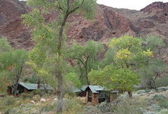 Grand Canyon: Phantom Ranch 0304