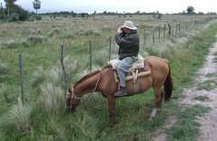 zo, 13/05/2007 - 16:48 - 49_ op de rug van een paard zie je meer van het wildlife