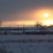 January Sun