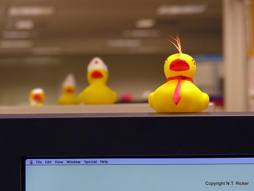 A Ducky Office