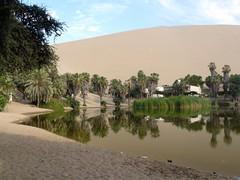 zo, 20/12/2009 - 13:25 - 04_ en meer in de woestijn