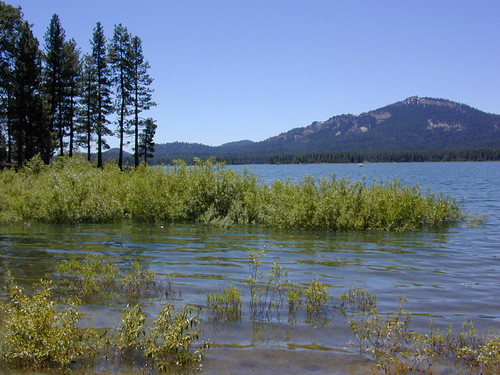 Lake Davis, California