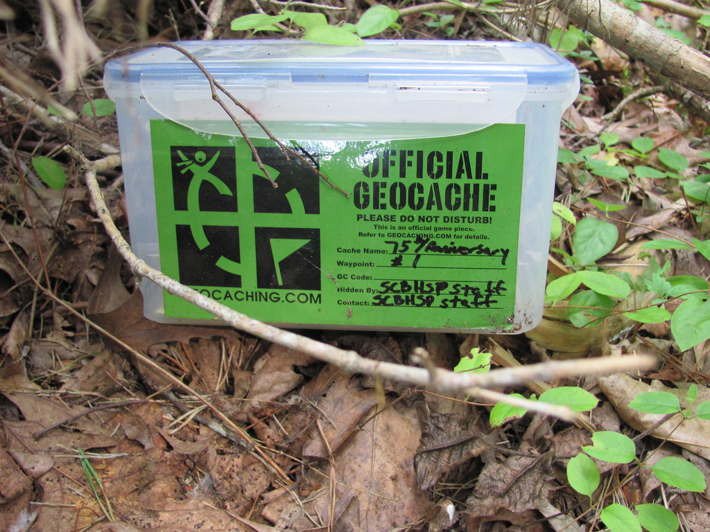 A geocache on a bed of dried leaves