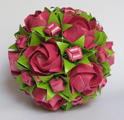 Electra + Kawasaki's roses