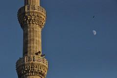 술탄 아흐메트 모스크