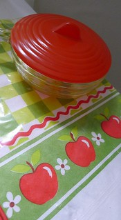 Retro Tablecloth & Bowl | by Lori L. Stalteri