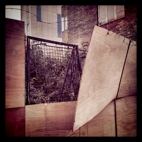 Breaking free, Rampayne St, London SW1 | by lucabelletti