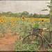 MFP_9728-testured bike