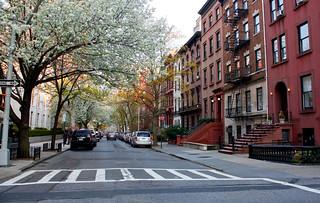 Brooklyn Heights | by Constanza Gatti