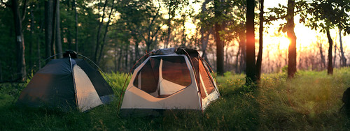 camping trees sunset green tents woods rei appalachiantrail delawarewatergap worthingtonstateforest