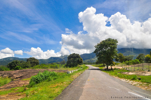 kanthalloor munnar kerala southindia india beauty nature travel leisure plantations clouds sky road ruralroad tree hillstation nikond90