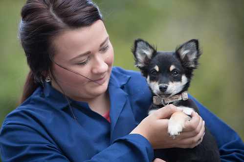 Animal Rescue Centre Manager