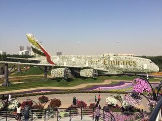 Emirates A380 Miracle Garden Dubai UAE | by Shalika999