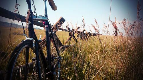 ride_novintage | by oparvez