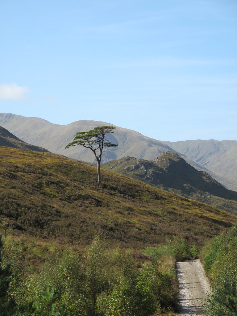 Shortly before Loch Affric