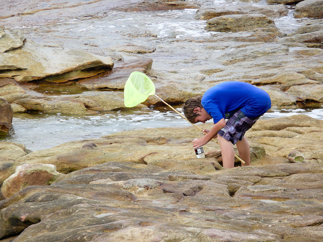 Rock Fishing Uvongo