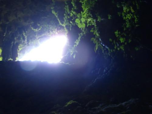 Rio Camuy Caverns | by Wavesonics