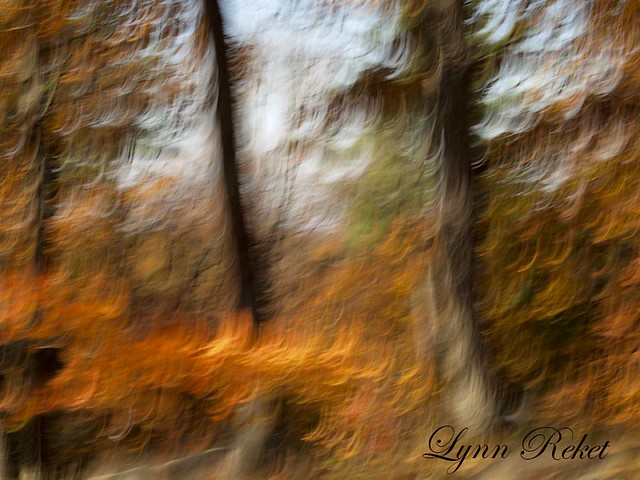 Fall Lens Painting #1