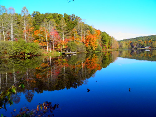 autumn lake fall water colors georgia still north fausett elzey digitalcameraclub robertlz hairygitselite