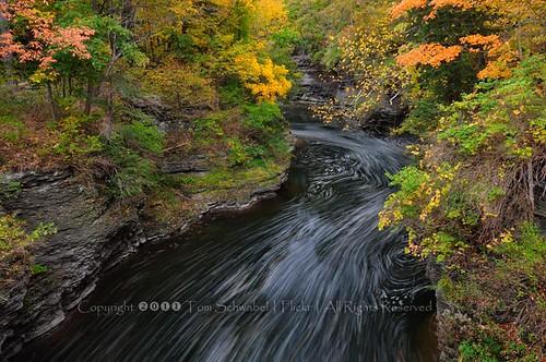 autumn trees newyork motion rock creek flow maple seasons change gorge ithaca streaks fingerlakes fallcreek tomschwabel hemlockgorge