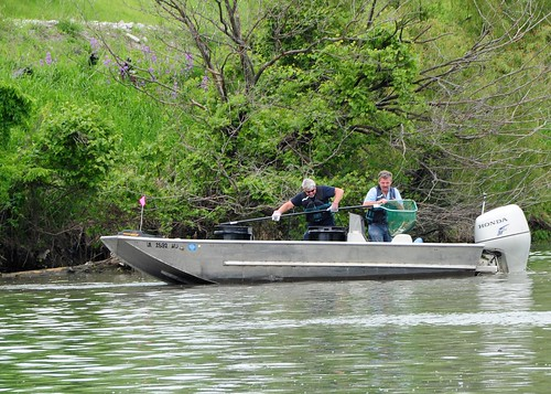 May 22, 2010 Fish Retrieval Operations | by Asian Carp Regional Coordinating Committee