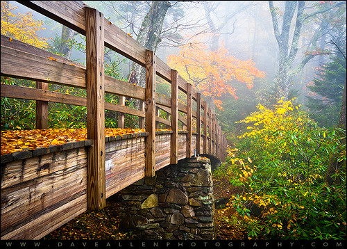 wood bridge autumn fall fog foot foggy foliage trail roughridge grandfathermountain cove linn linncoveviaduct hiking footbridge tanawhatrail nature woods fallfoliage leafchange weather forest appalachian appalachia appalachians daveallen nikon d700 wideangle 1735mm f11 leaves color colors southernappalachians parkway blueridgeparkway brp northcarolina wnc westernnorthcarolina seasons seasonal scenic blueridge landscape mountains blueridgemountains outdoors nc photography hike mountain orange yellow green trees mygearandmeplatinum mygearandmediamond