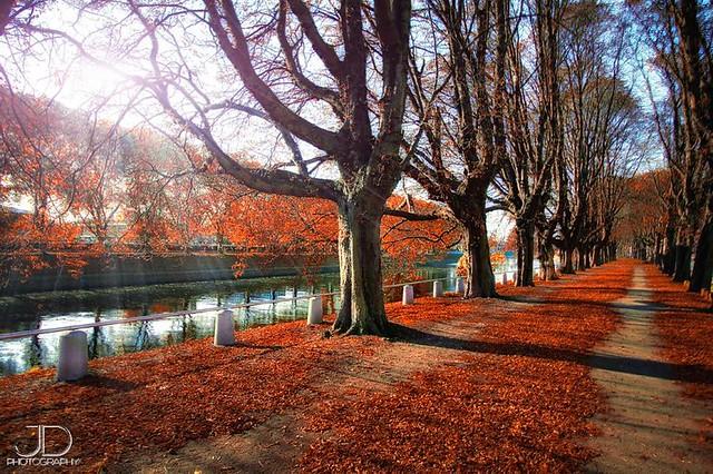 Canal de l'Ourthe - Liège