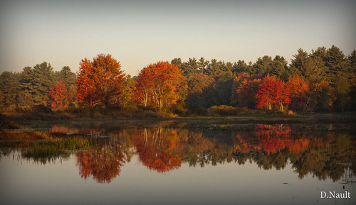 color fall water leaves landscape lakes newengland newhampshire