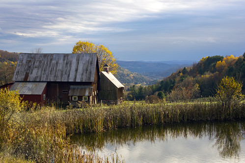 autumn trees fall leaves barn pond vermont foliage