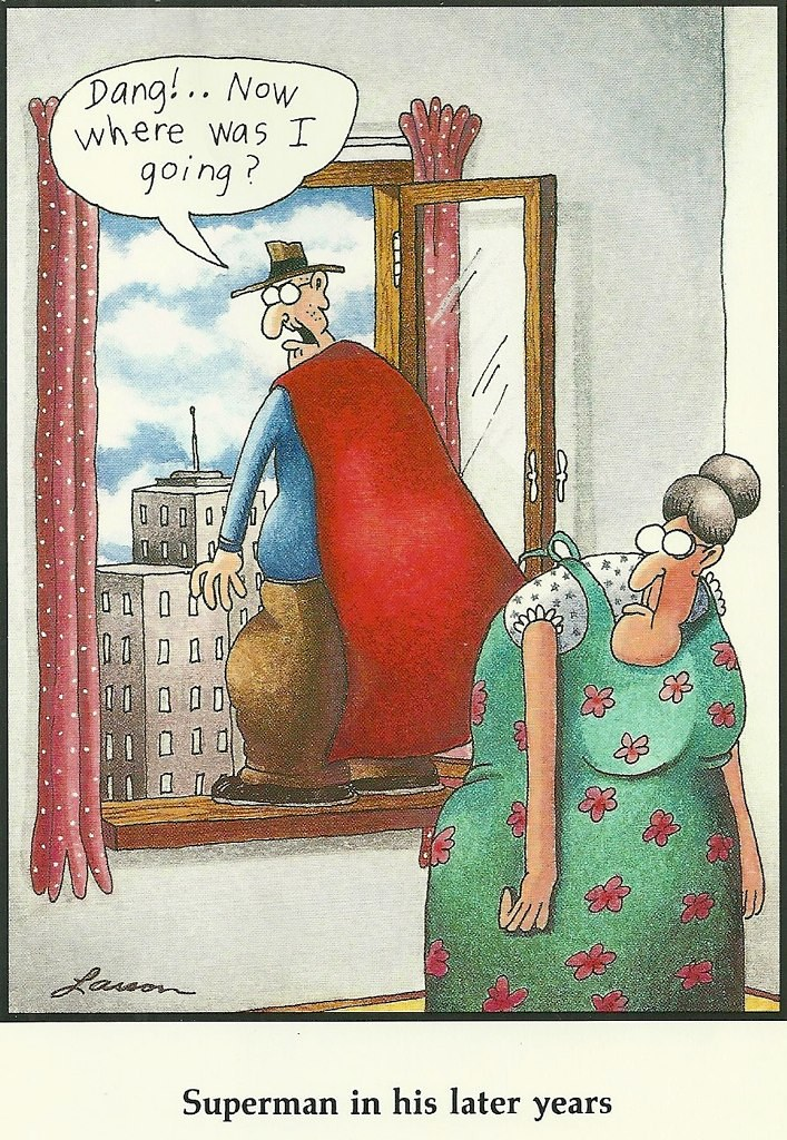 Image result for far side retirement cartoons