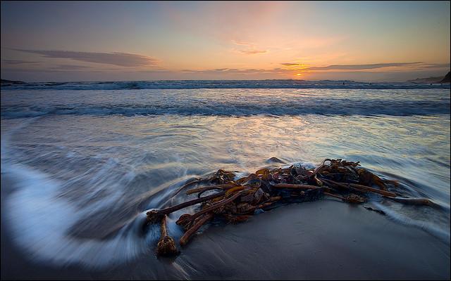 Inch Beach Nov11