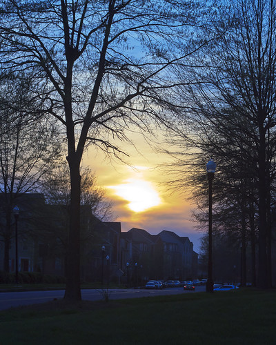 road street trees sunset sky sun tree canon buildings ef50mmf18ii t1i
