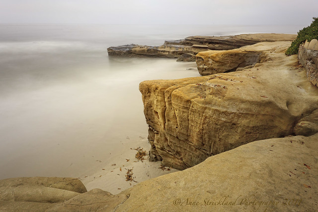 the cliffs @ windansea