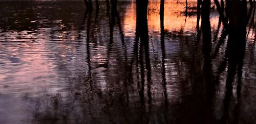 treeswaterconnecticutrivermoodcloudsstormssunsetssunrises nightclosesin pjddigipic river reflections silhouettes lumixcamera panasonicdmcg1
