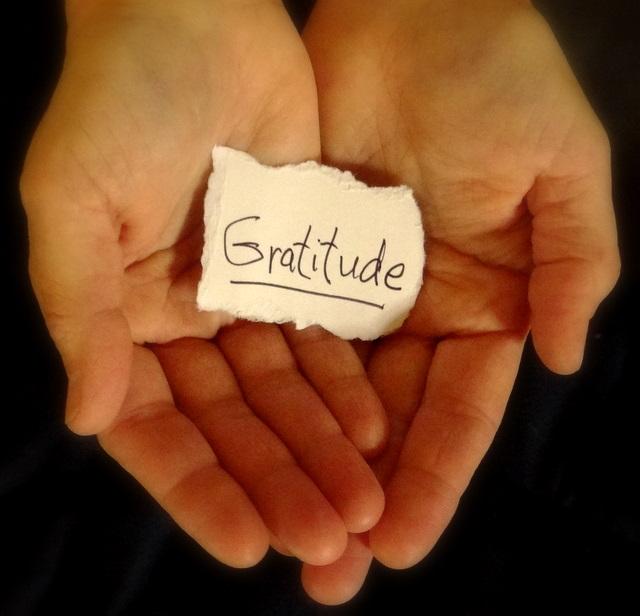 Gratitude...........