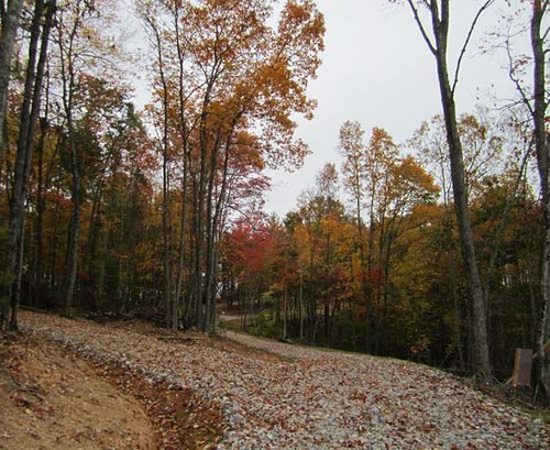 A far cry from the muddy skid trail of a few months ago. This picture was taken in October 2011.