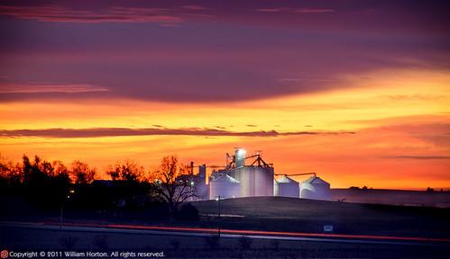 sunrise farm iowa glidden