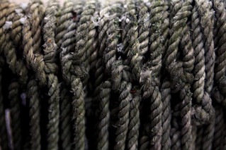 Defy the Gordian Knot | by GollyGforce - Living My Worst Nightmare