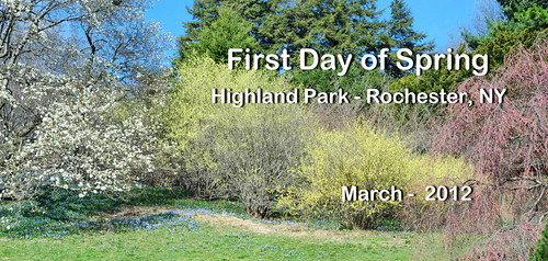 01 First Day Spring - Highland Park | by Adventure George