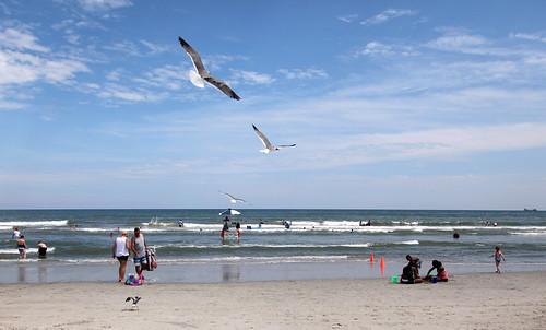 ocean sea sky people beach water clouds swimming sand waves seagull lifeguard swimmers wildwood wildwoodnj