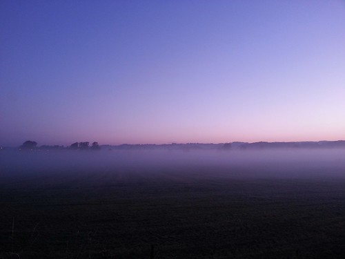 morning fog clear