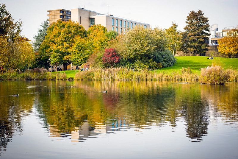 The lake on campus on an autumnal day so the leaves on the trees are changing colour.