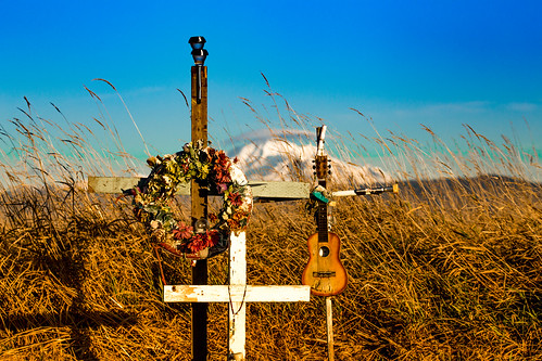 cometostay robertfrost unusedgraveyard poem grave graveyard gravemarker cross death dying mtbaker grass fieldstribute