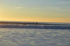 Surcando olas